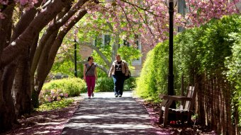 Students outside during the spring