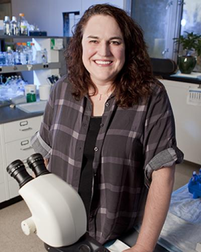 Rebecca Burdine, Associate Professor of Molecular Biology